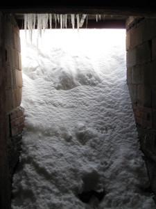 Pocket snow 005